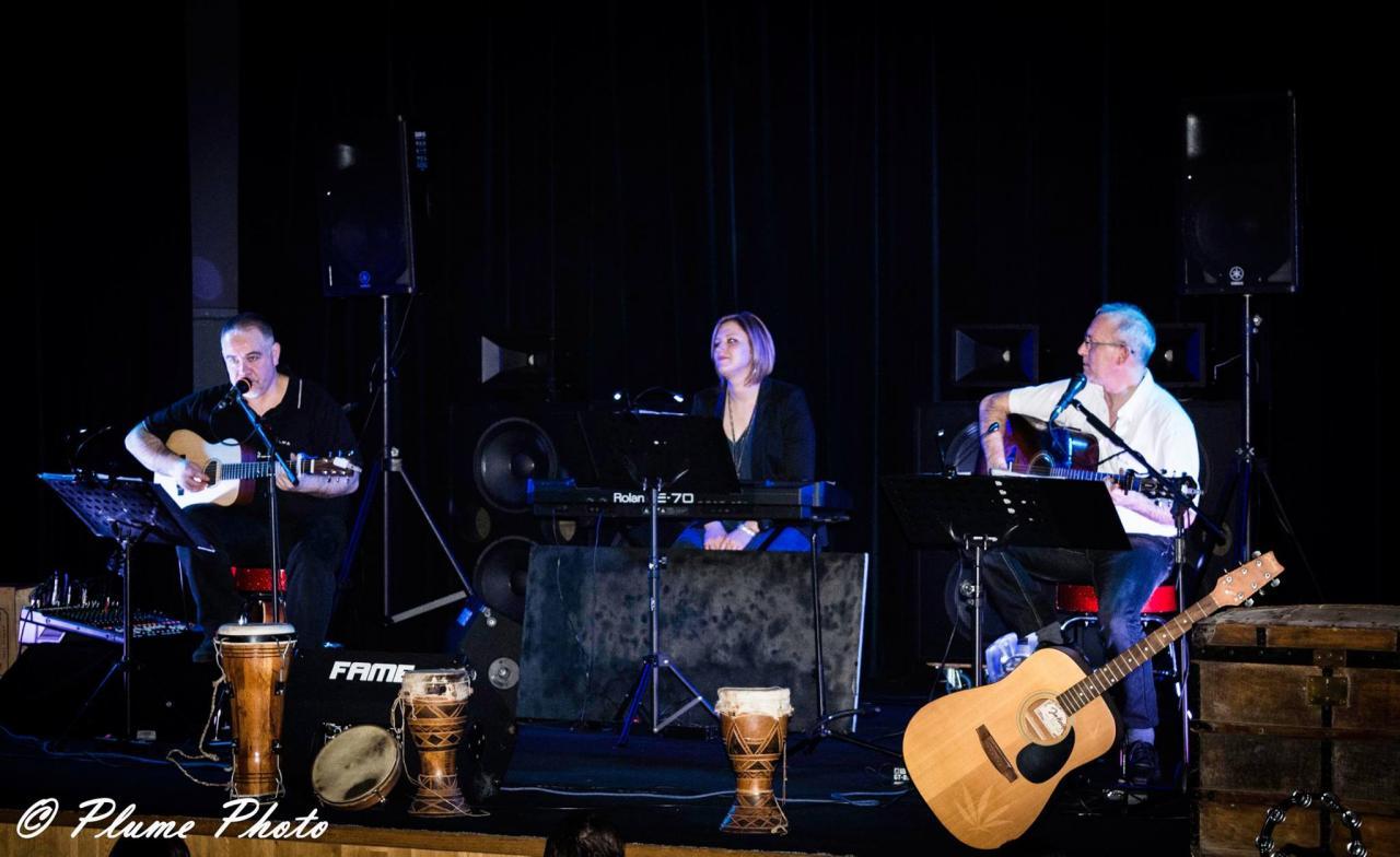 Concert Château des Rohan 2017